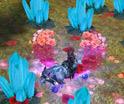 兵王游戏截图99朵玫瑰