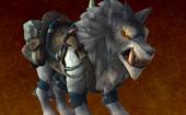 霜狼兽人声望指南