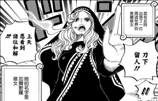 把自己作成了相片 加尔默罗修女是海贼王中运气最差的人
