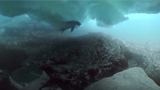 VR精彩短片 南极冰川下的海底世界