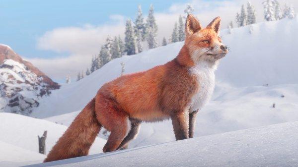 《荒野大镖客2》野生动物新图 猛兽齐聚狂野西部