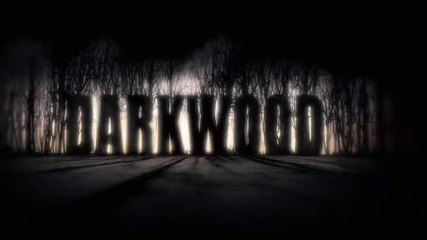 生存恐怖《阴暗森林》先导预告 5月登陆Switch平台