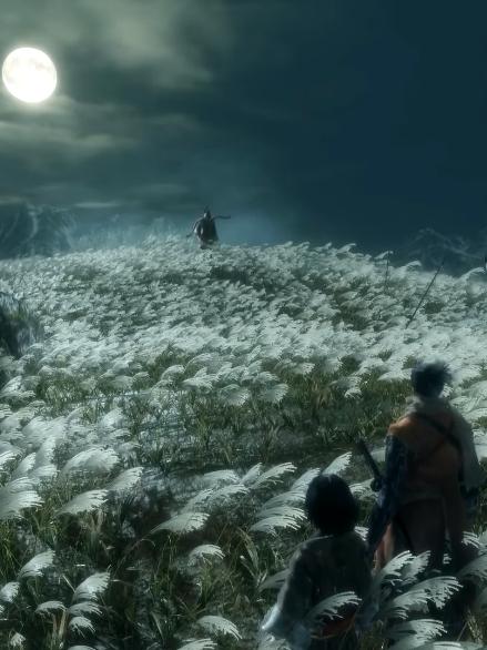 《只狼:影逝二度》评测 不死忍者的救主之路