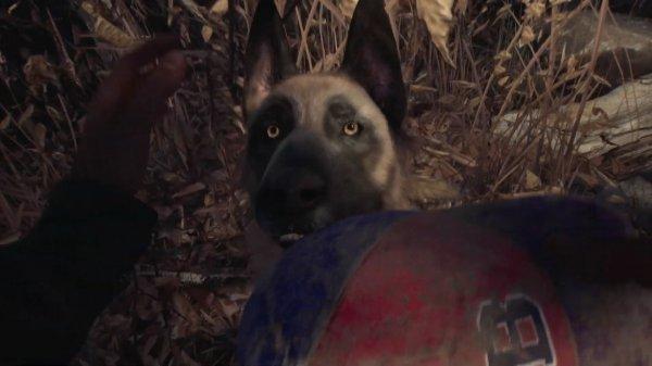 《布莱尔女巫》发布新演示 一人一狗勇闯恐怖森林