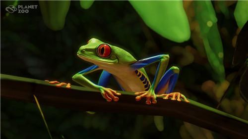 《动物园之星》全新DLC发售 入驻美洲豹等五种南美动物