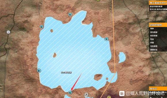 猎人荒野的呼唤湖区郊狼任务完成攻略