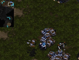 《星际争霸》游戏截图4
