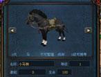 来个小马驹鉴定超牛小马驹