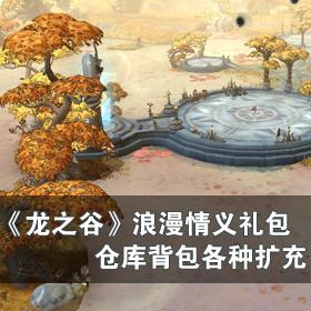龙之谷浪漫情义礼包 网络游戏新手卡领取